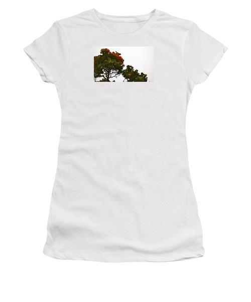 Apapane Atop An Orange Ohia Lehua Tree  Women's T-Shirt (Junior Cut) by Lehua Pekelo-Stearns