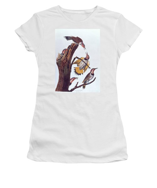 Audubon Golden-winged Woodpeckers Women's T-Shirt