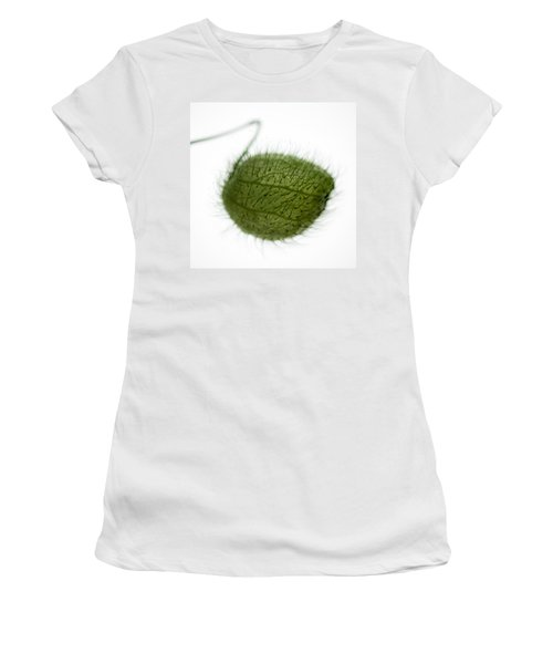Balloon Plant Women's T-Shirt (Athletic Fit)