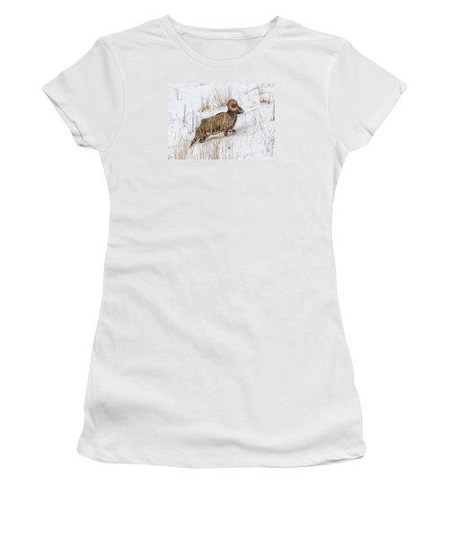 Bighorn In Yellowstone Women's T-Shirt (Junior Cut) by Alan Toepfer