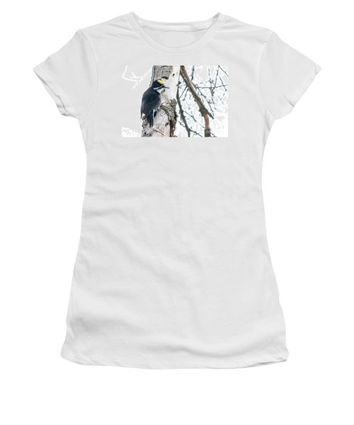 Black-backed Woodpecker Women's T-Shirt (Athletic Fit)