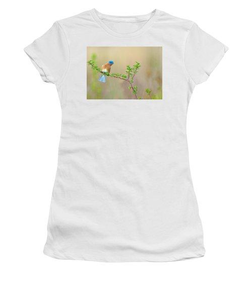 Bluebird Breeze Women's T-Shirt (Athletic Fit)