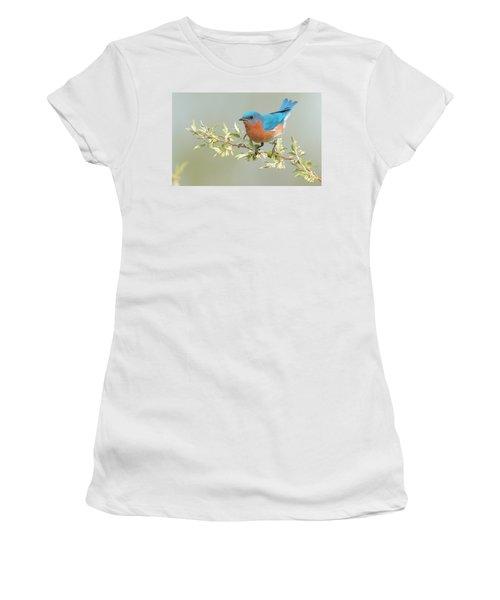 Bluebird Floral Women's T-Shirt (Athletic Fit)