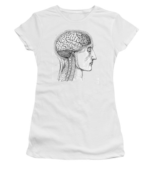 Brain From Right Side, 1883 Women's T-Shirt