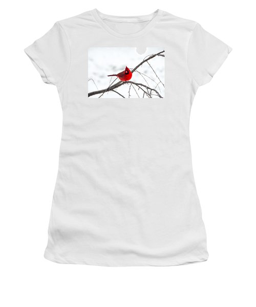 Cardinal On A Branch  Women's T-Shirt (Athletic Fit)
