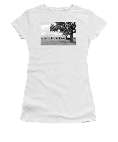 Women's T-Shirt (Junior Cut) featuring the photograph Cattle Ranch In Summer by Clarice  Lakota