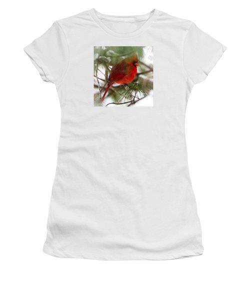 Christmas Cardinal Women's T-Shirt (Junior Cut) by Kerri Farley