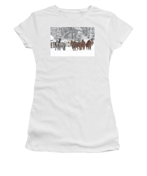 Cold Ponnies Women's T-Shirt (Junior Cut) by Diane Bohna