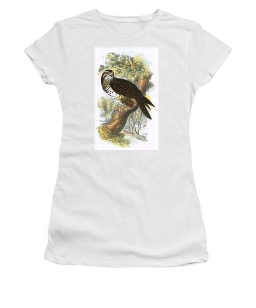 Common Buzzard Women's T-Shirt (Junior Cut) by English School
