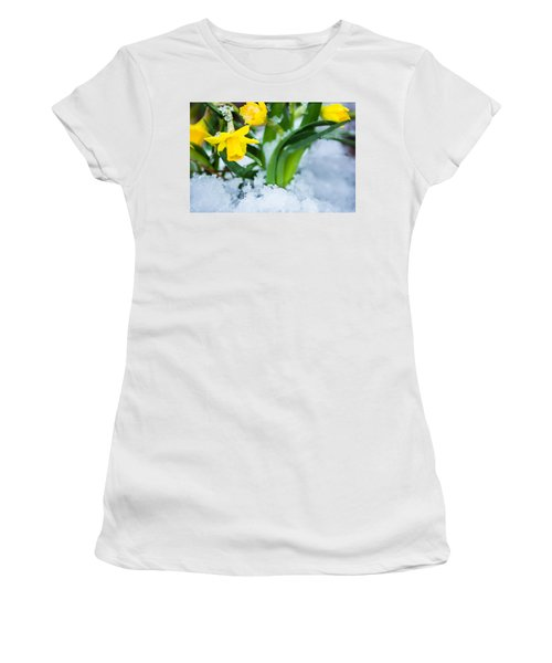 Daffodils In The Snow  Women's T-Shirt