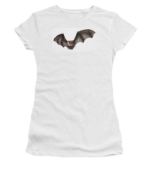 Daubentons Bat Myotis Daubentonii - Murin De Daubenton-murcielago Ribereno-vespertilio Di Daubenton Women's T-Shirt