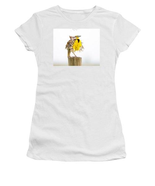 Flluffy Meadowlark Women's T-Shirt (Junior Cut) by Bill Swindaman