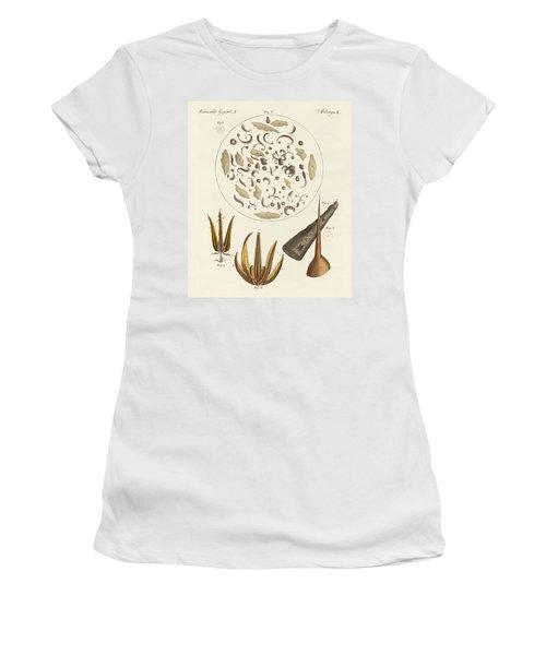 Microscopic Objects Women's T-Shirt