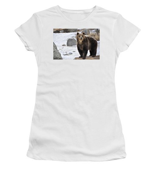 Montana Grizzly  Women's T-Shirt (Athletic Fit)