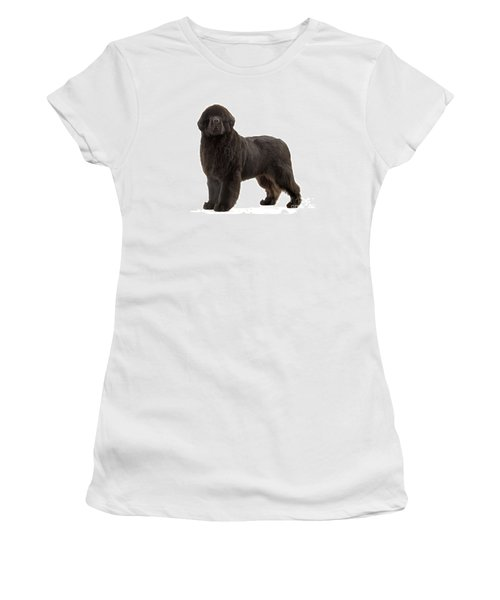 Newfoundland Puppy Dog Women's T-Shirt