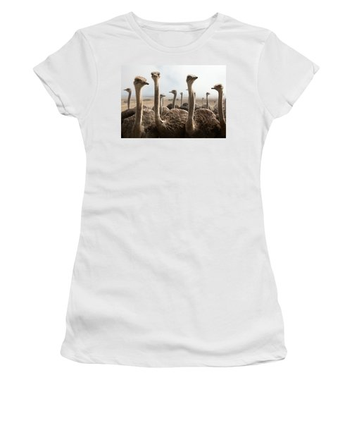 Ostrich Heads Women's T-Shirt (Junior Cut) by Johan Swanepoel