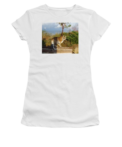 Out Of Africa  Tiger 1 Women's T-Shirt (Athletic Fit)
