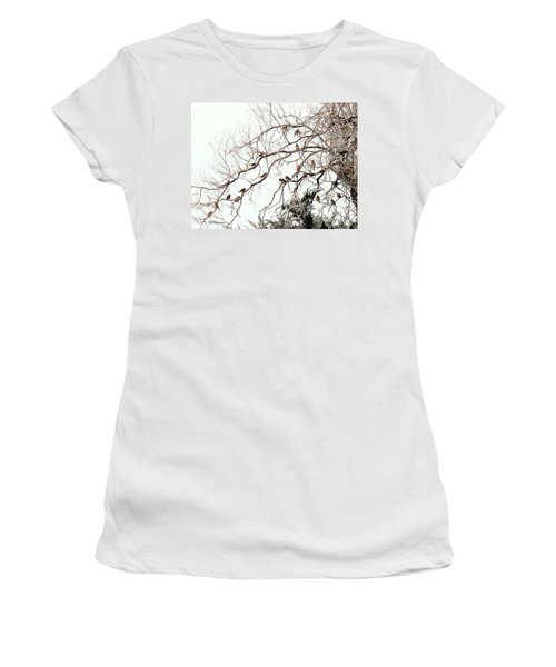 Women's T-Shirt (Junior Cut) featuring the photograph Out On A Limb First Snow by Barbara Chichester