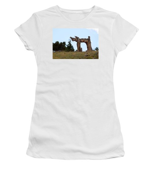 Pi In The Sky Women's T-Shirt