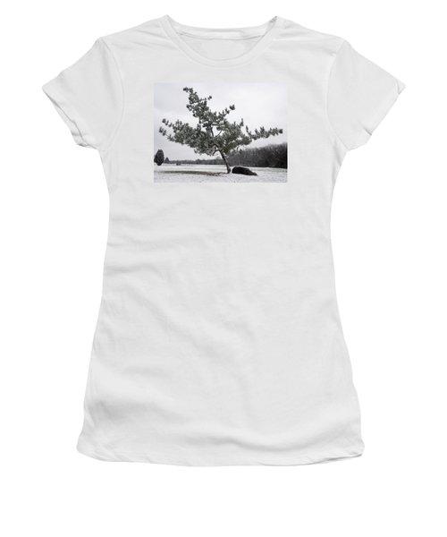 Pine Tree Women's T-Shirt (Junior Cut) by Melinda Fawver