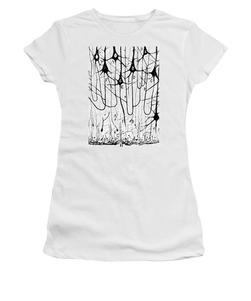 Pyramidal Cells Illustrated By Cajal Women's T-Shirt (Athletic Fit)