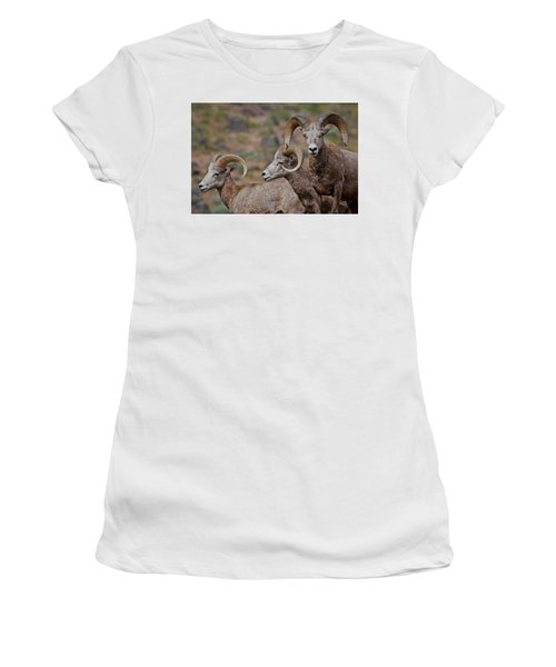 Rams In Three Women's T-Shirt (Athletic Fit)