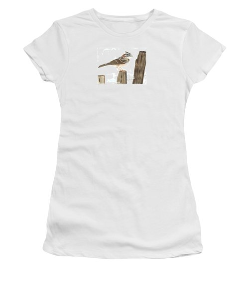 Rufous-collared Sparrow Women's T-Shirt (Junior Cut) by Cindy Hitchcock