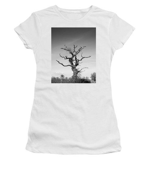 Stark Tree Women's T-Shirt