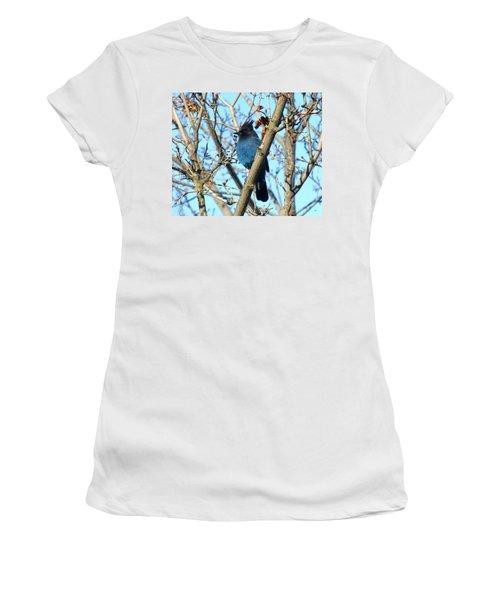 Steller's Jay In Winter Women's T-Shirt