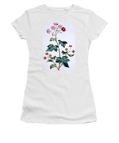 Sweet Canada Raspberry Women's T-Shirt (Junior Cut) by John Edwards
