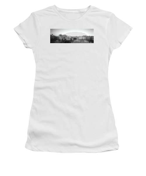 Tall Grass At The Lakeside, Anhinga Women's T-Shirt (Athletic Fit)