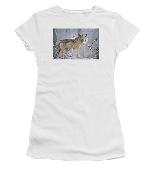 Timber Wolf Pictures 188 Women's T-Shirt (Athletic Fit)