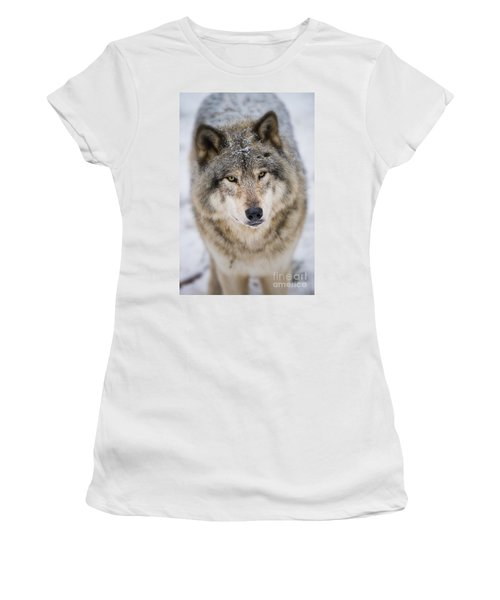Timber Wolf Pictures 254 Women's T-Shirt (Athletic Fit)