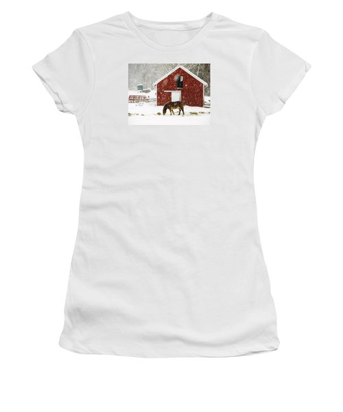 Vermont Christmas Eve Snowstorm Women's T-Shirt