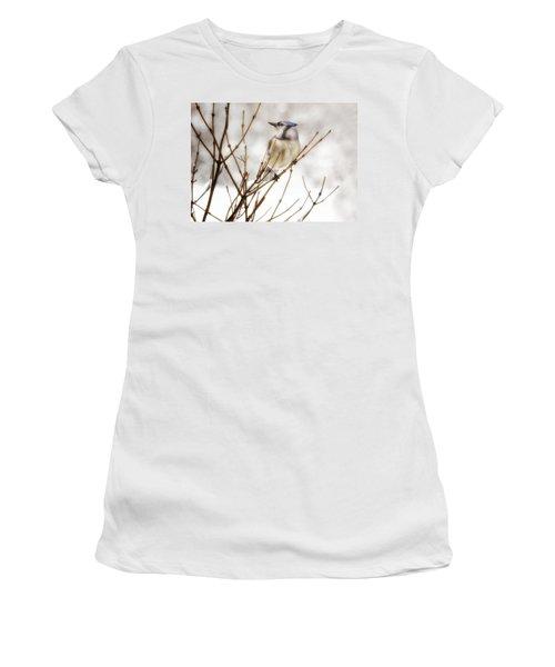 Winter Blue Jay Women's T-Shirt