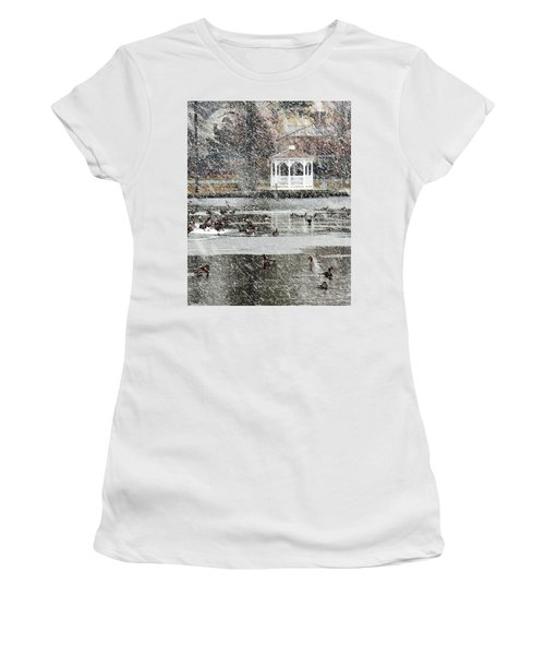 Wintering Geese On Silver Lake Women's T-Shirt