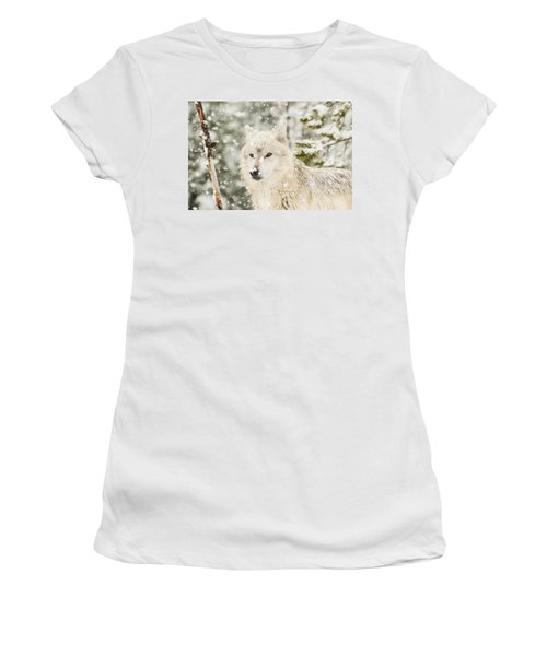 Wolf In Snow Women's T-Shirt (Athletic Fit)