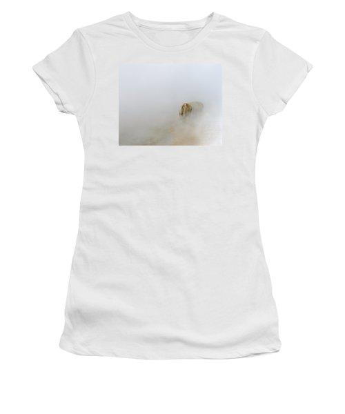 Yellowstone Bison Women's T-Shirt