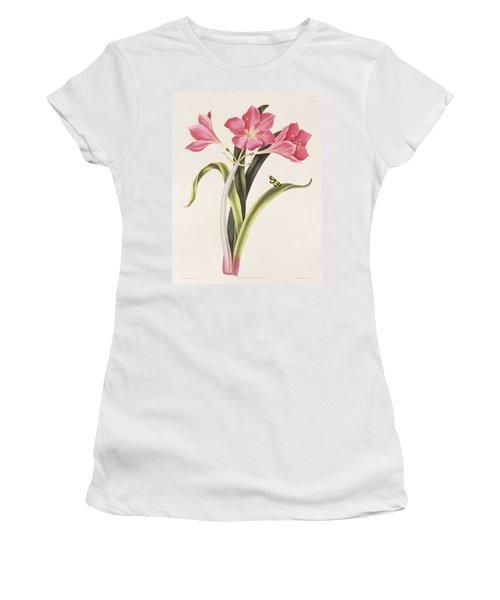 Amaryllis Purpurea Women's T-Shirt
