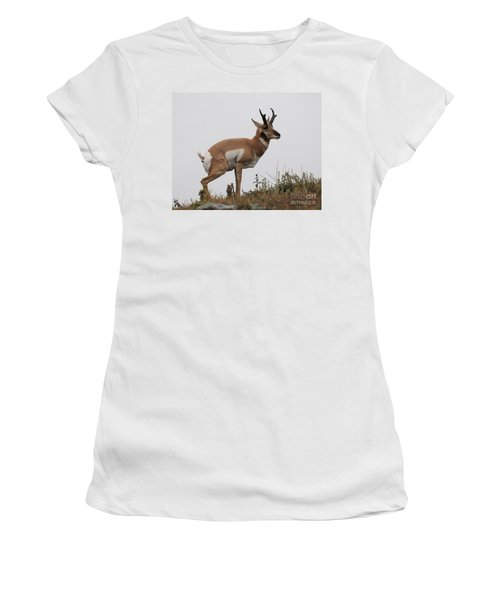 Antelope Critiques Photography Women's T-Shirt (Athletic Fit)