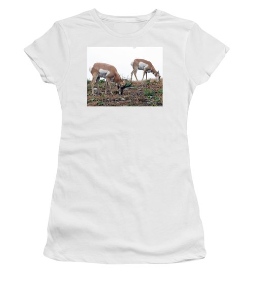Antelopes Grazing Women's T-Shirt (Junior Cut) by Art Whitton