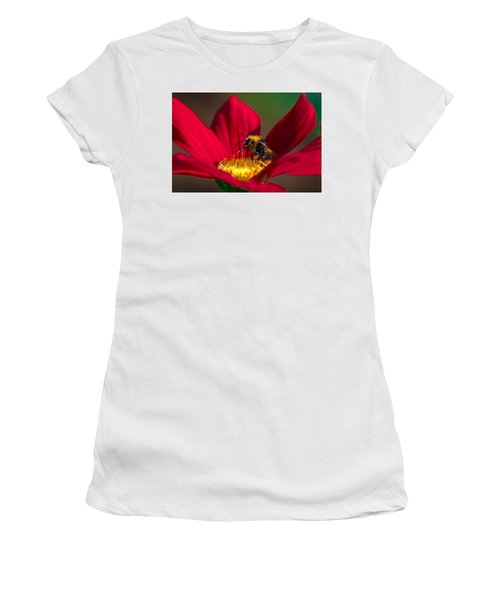 Beebot Women's T-Shirt