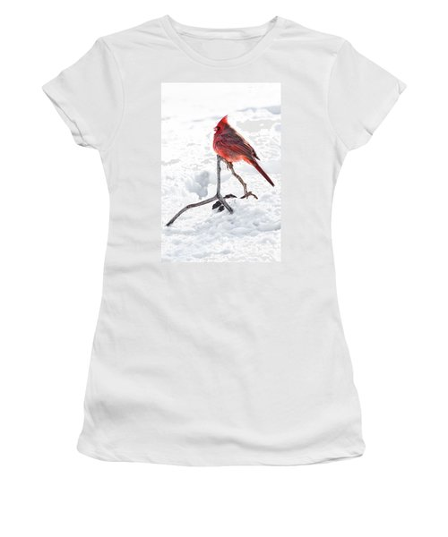 Women's T-Shirt (Junior Cut) featuring the photograph Cardinal's Song by Tamyra Ayles