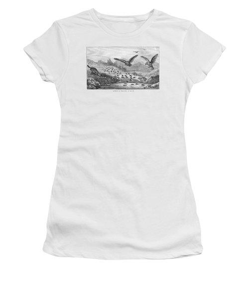 Lemming Migration Women's T-Shirt
