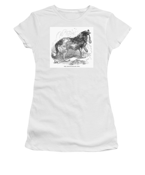 Newfoundland Dog, 1855 Women's T-Shirt