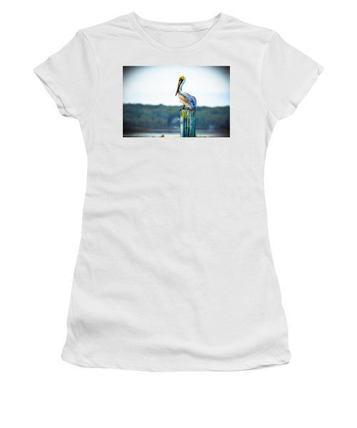 Women's T-Shirt (Junior Cut) featuring the photograph Posing Pelican by Shannon Harrington