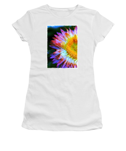 Strawflower Women's T-Shirt (Junior Cut) by Judi Bagwell