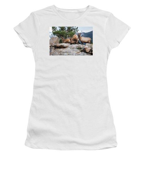 Wapiti Women's T-Shirt (Athletic Fit)
