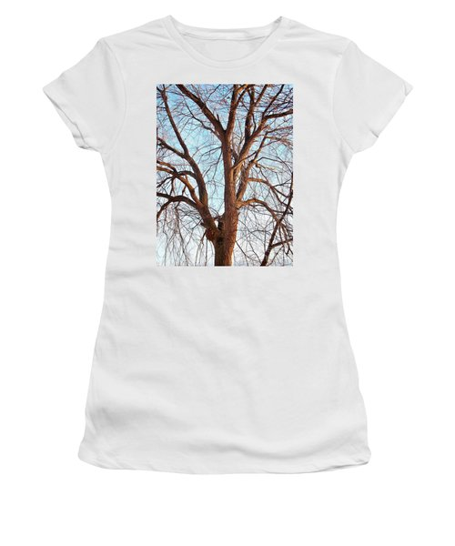 Women's T-Shirt (Junior Cut) featuring the photograph Winter Light by Chalet Roome-Rigdon