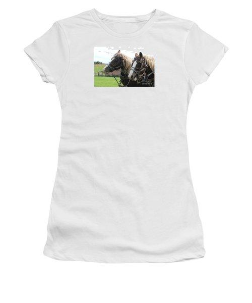 Belgian Horses Women's T-Shirt (Junior Cut) by Yumi Johnson